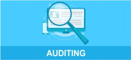 company auditing